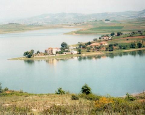 Liqeni